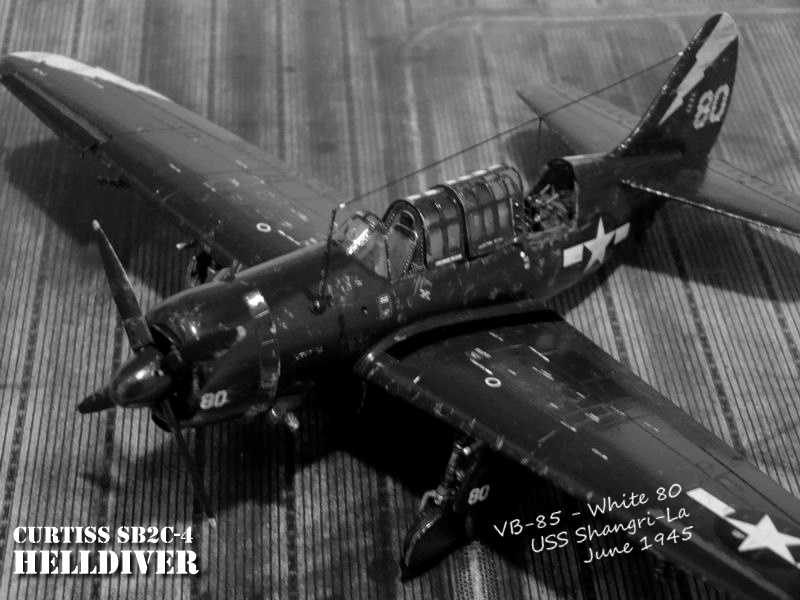 Curtiss Helldiver White 80